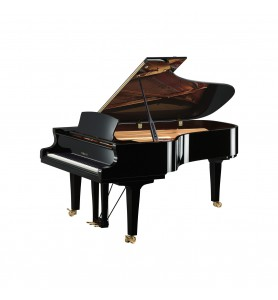 Photo Yamaha Premium S7x